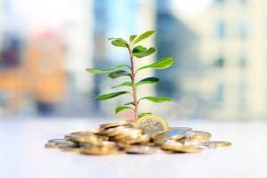 Sezione investimenti